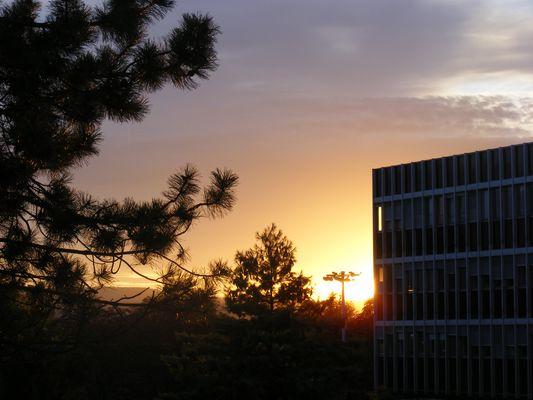 Le soleil se couche sur la ville.