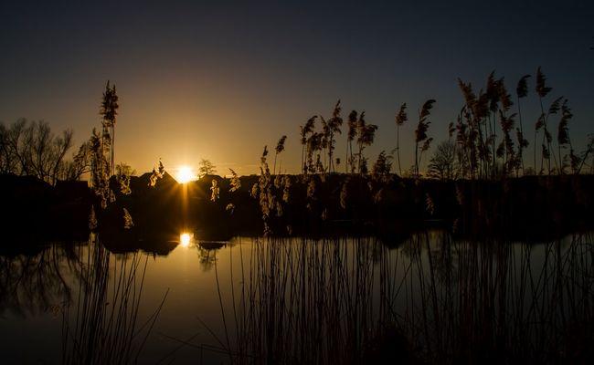 Le soleil s'est couché sur notre campagne....Bonne nuit!