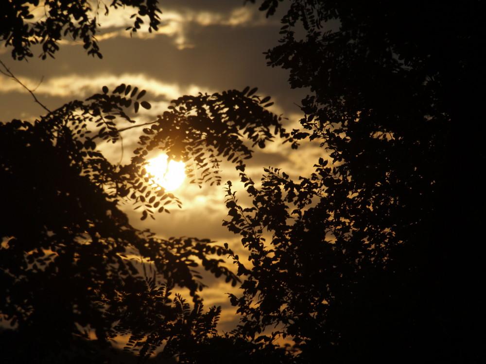 Le soleil vient de se coucher