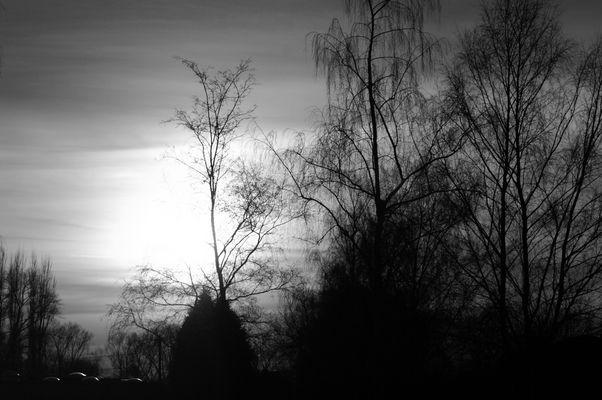 Le sombre