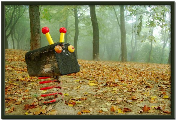 le strane creature dei boschi