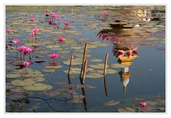 Le temple du lotus.
