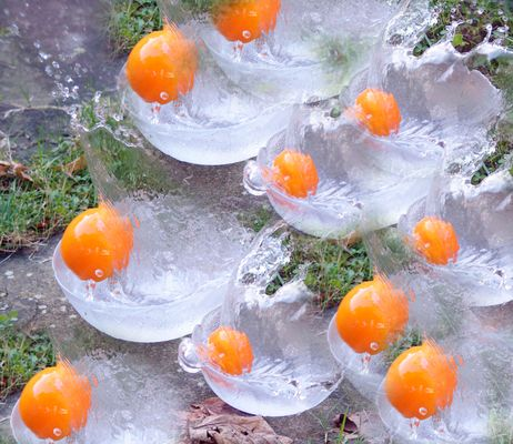 Le tour de manège des oranges.
