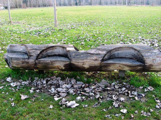 Le tronc sofa