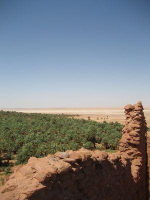 Le vert dans le desert 2