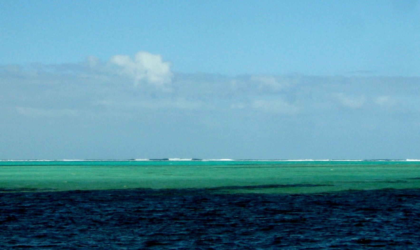 Le vert des mers du sud