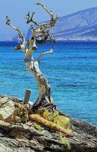 Le vieille arbre