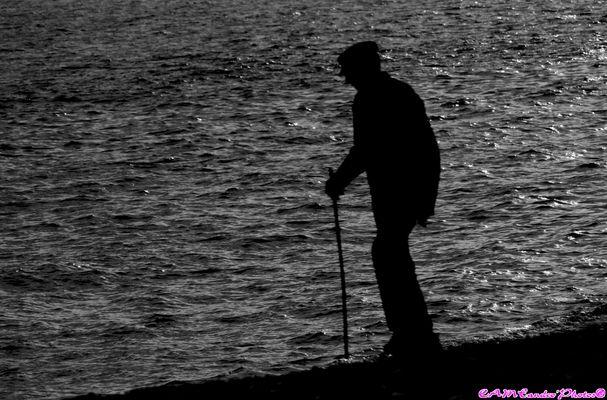 le viel homme et la mer.