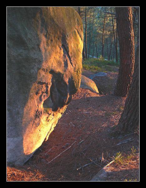 le visage d'un dormeur de pierre