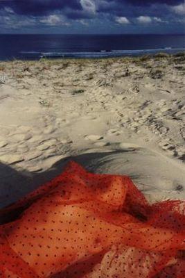 Le voile des sables