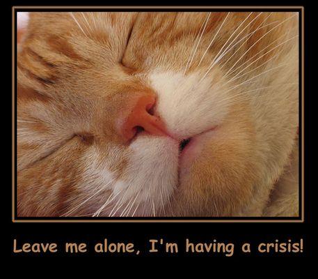 Leave me alone, I'm having a crisis!