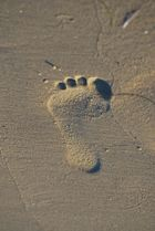 Leave your footprint.....