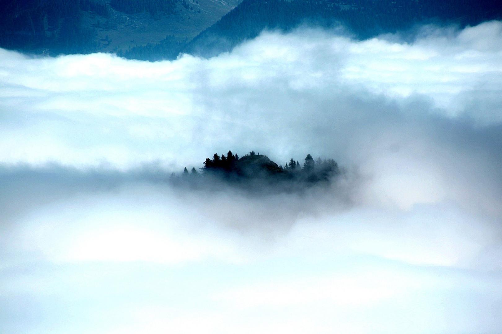 Leben auf der Wolke