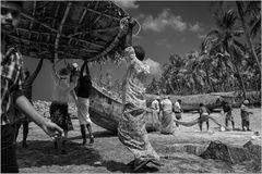 Leben entlang der Western Ghats ~ Kaipi