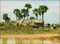 Leben in Cambodia- Am Ufer des Tonle Sap