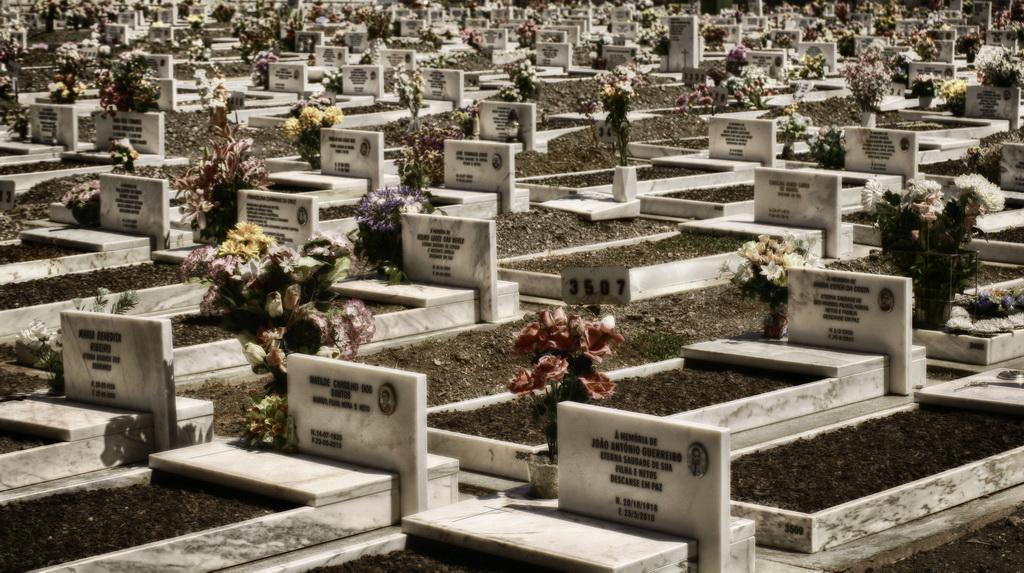 Leben und Sterben 2012
