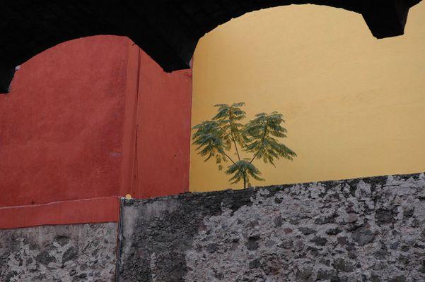 Leben zwischen Mauern