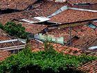 lebendige Dächer