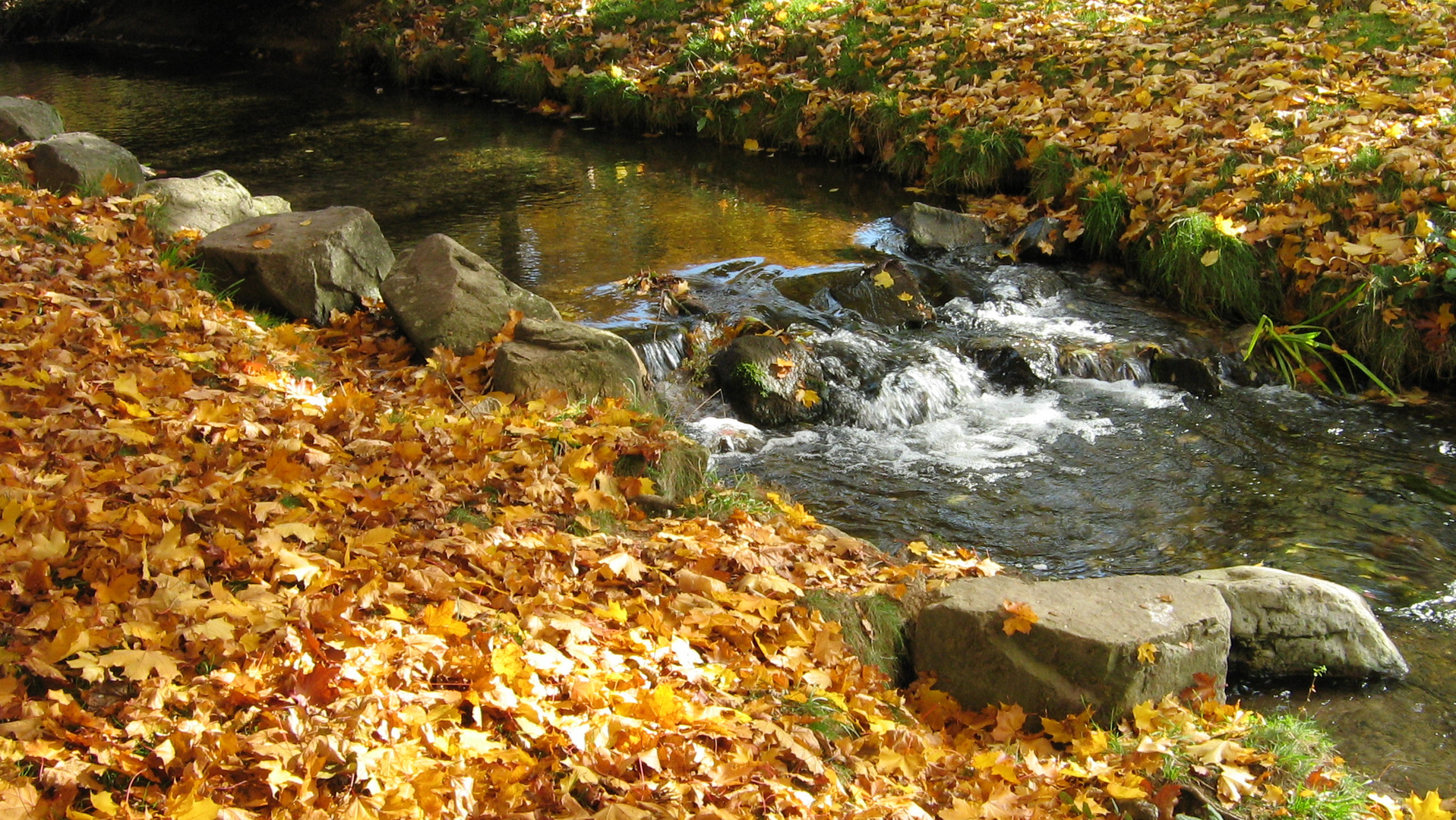 Lebendiges Wasser im Herbst