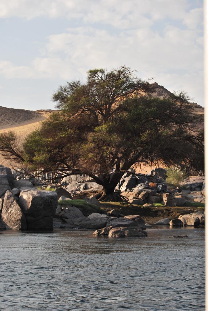 Lebensader Nil
