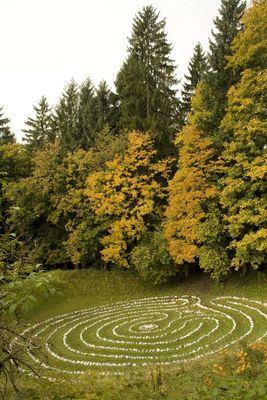 Lebenskreis im Herbst