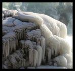 Lebensraum der Eistrolle ...