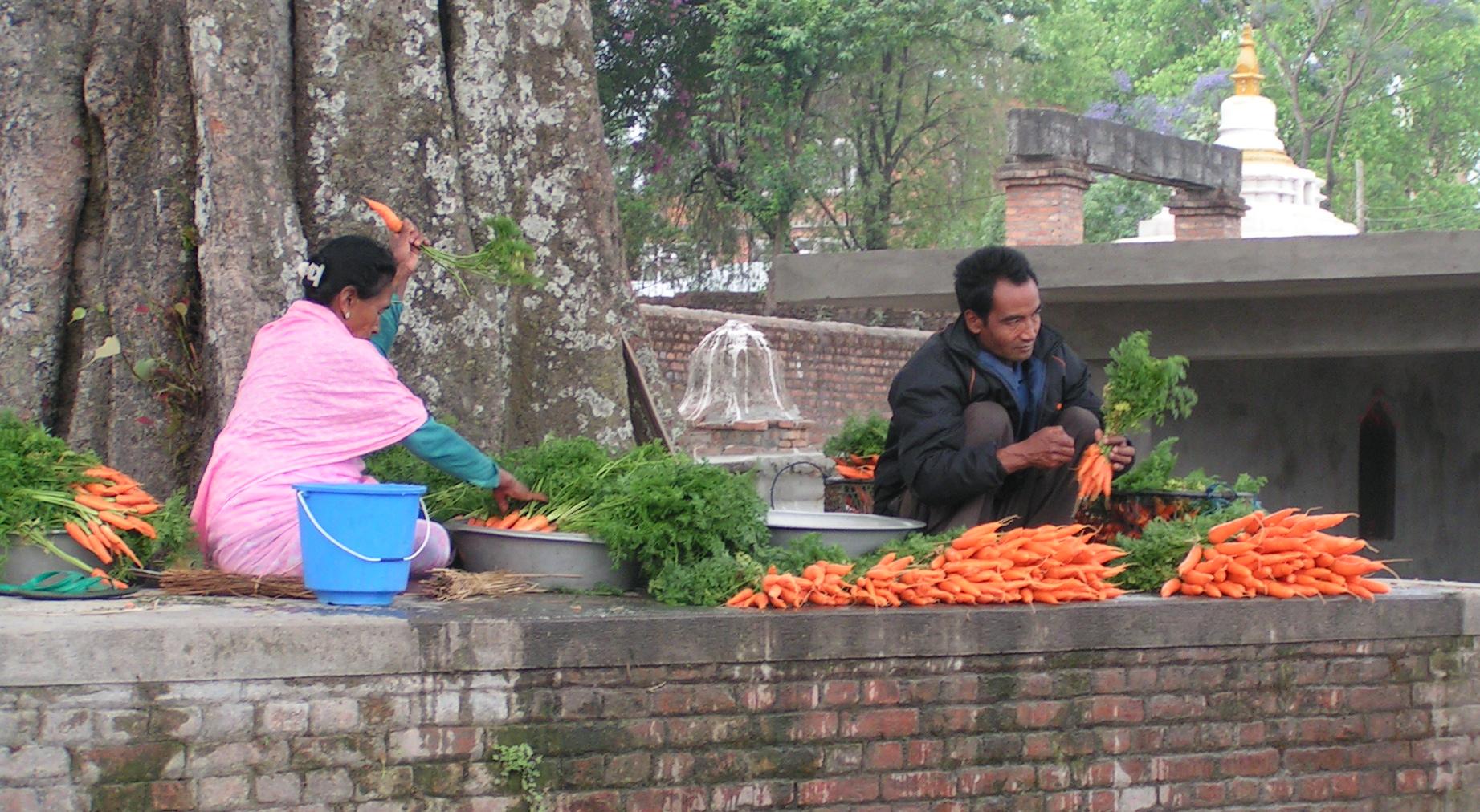 Lecker Möhrchen Straßenverkauf in Kathmandu