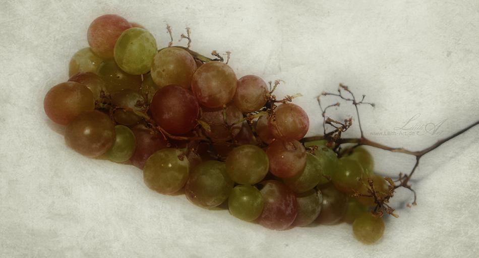 lecker Weintrauben