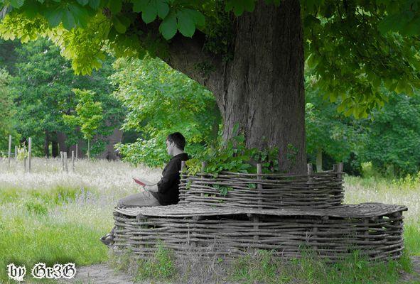 Lecteur en nature