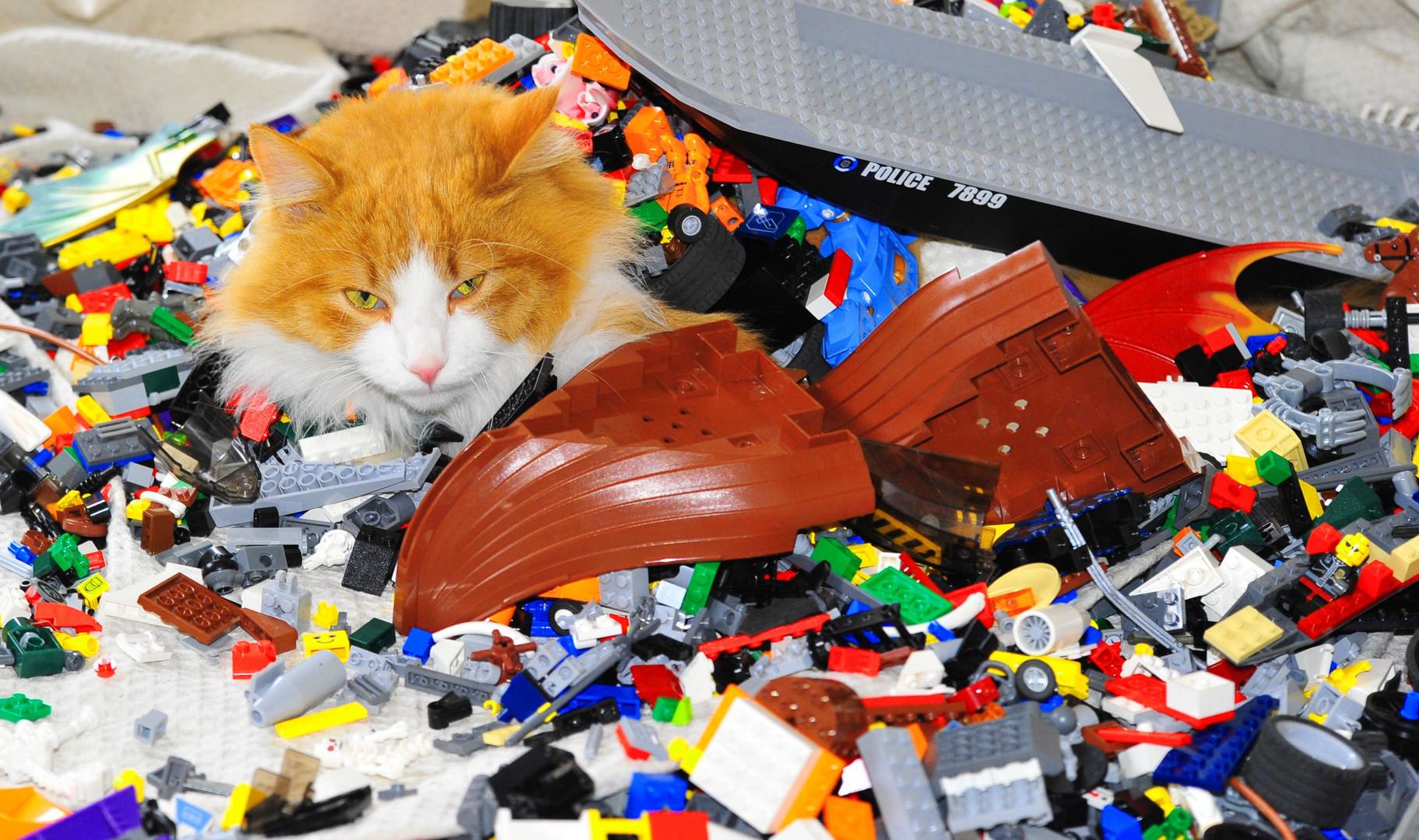 Legotiger