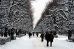 Leibesertüchtigender Winterspaziergang im Schlosspark Schönbrunn