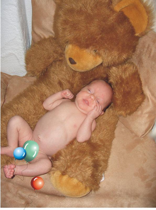 Leibwache Teddybär