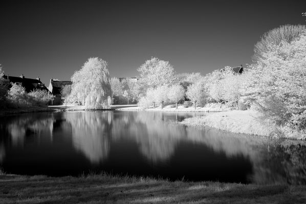 Leica X1 Infrared Photography
