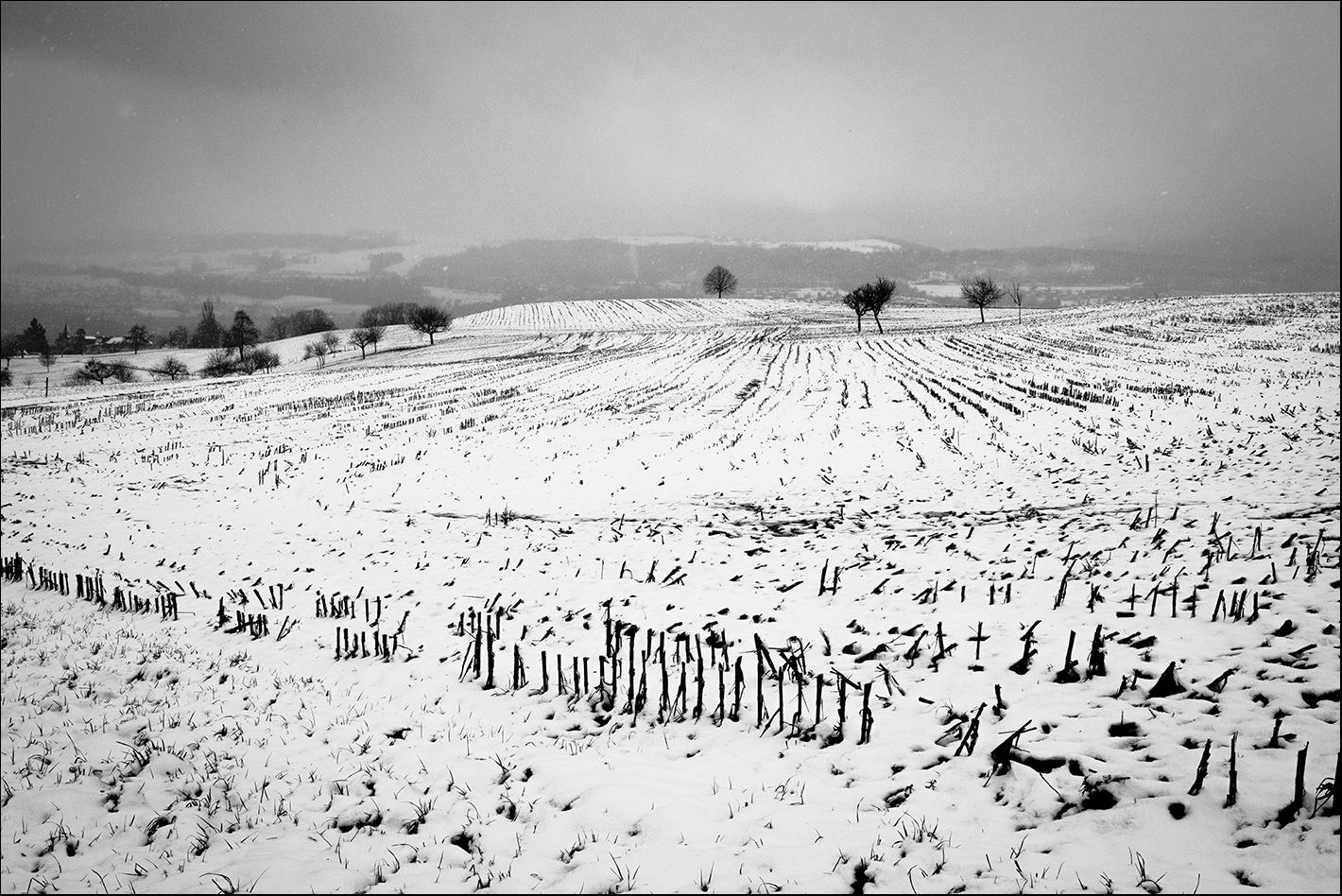 Leichter Schneefall bei Meilen 1