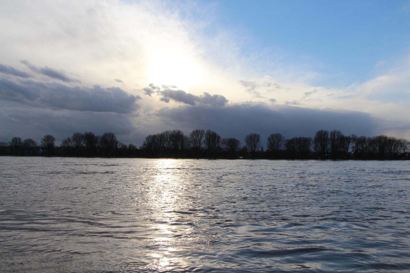 leichtes Hochwasser am Rhein