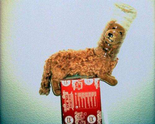 Leika, der erste Hund im Weltraum
