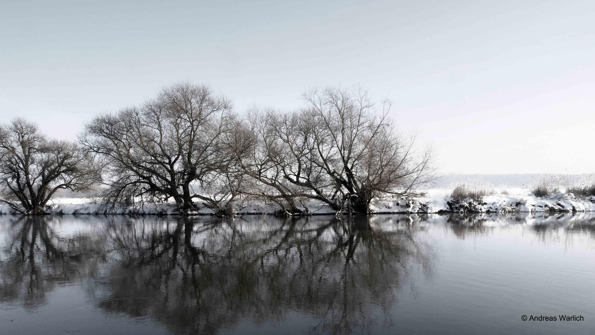 Leine bei Neustadt/Rgbe im Winter