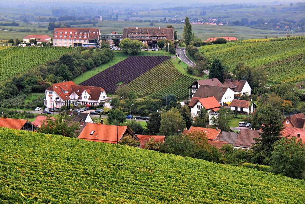 Leinsweiler von oben (1)