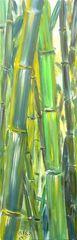 Leinwand 150 x 50 cm