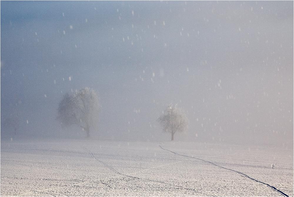 Leise rieselt der Schnee ....