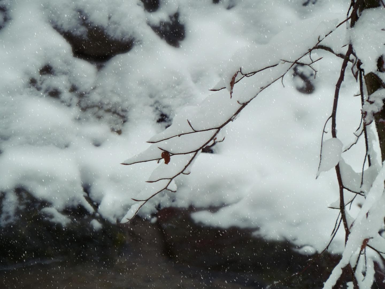 Leiser Schnee