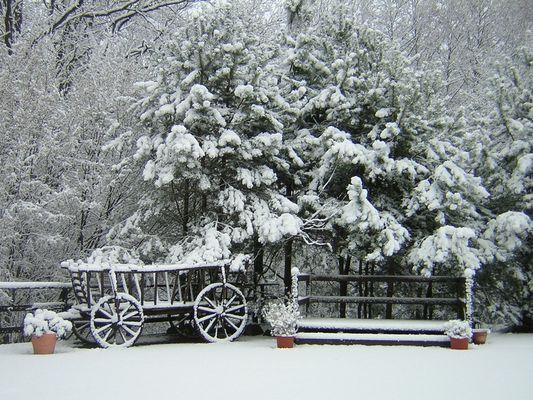 Leiterwagen im Schnee