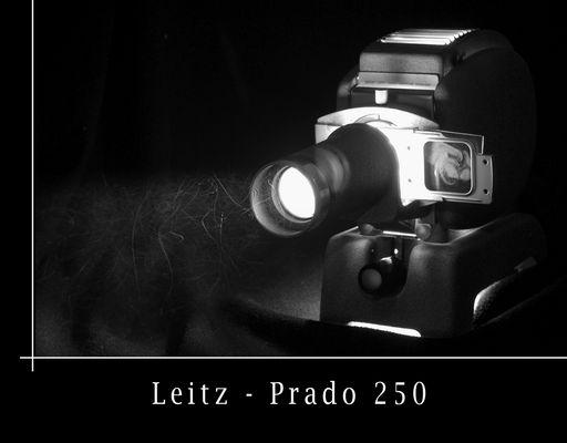 Leitz - Prado 250