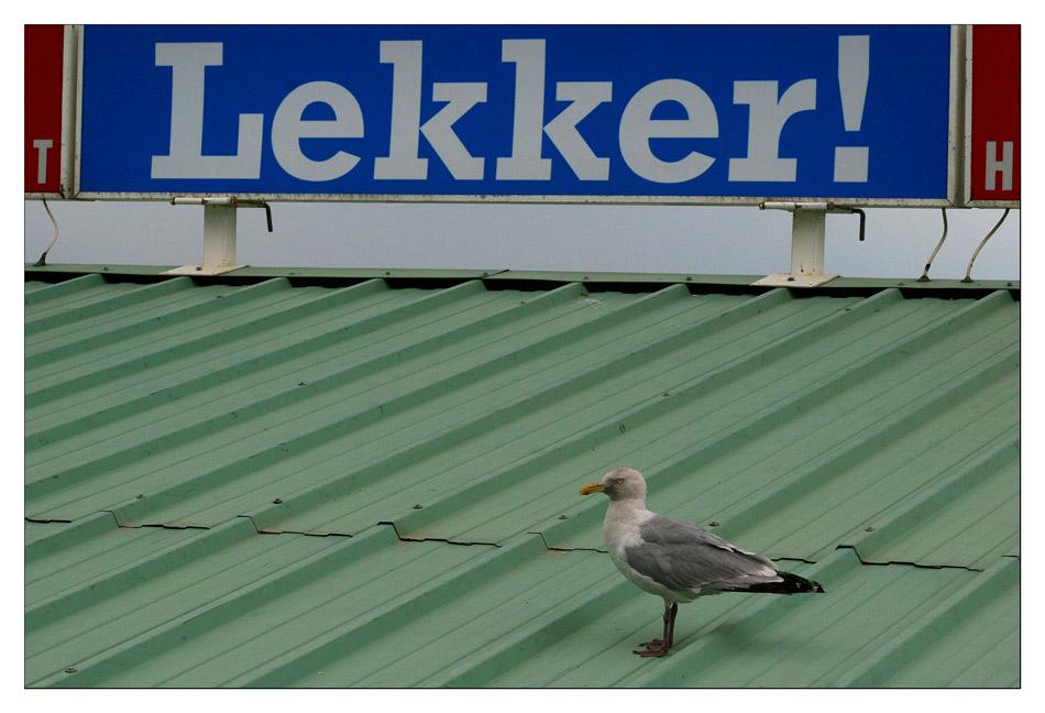 Lekker! - Holland-Impression #20