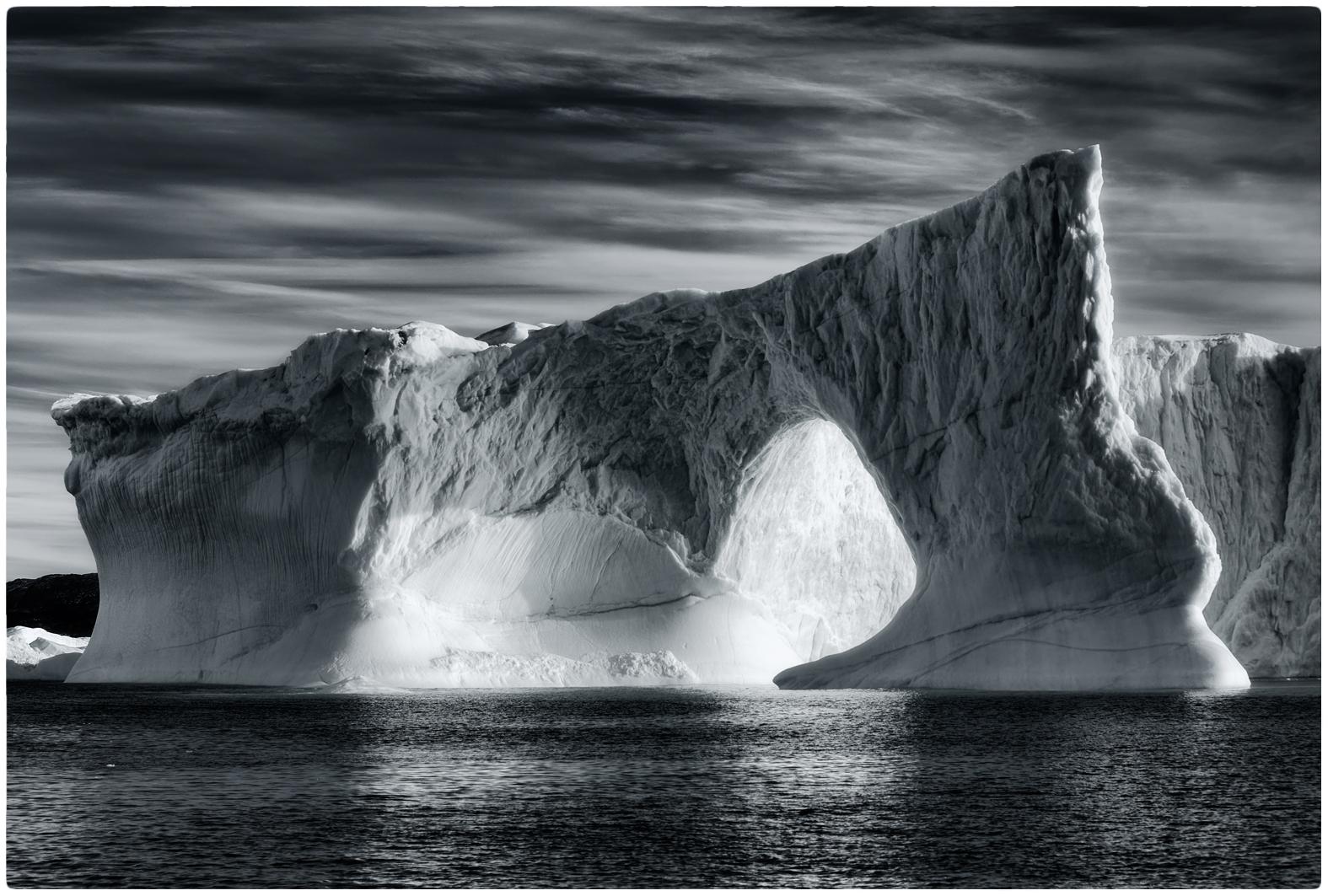 L'elefante di ghiaccio