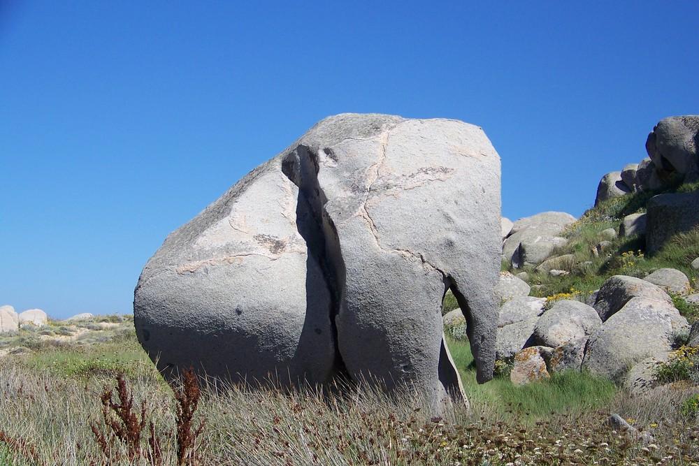 L'éléphant de roche