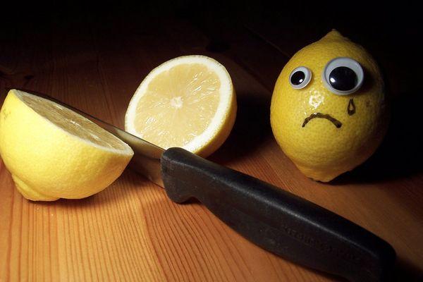 Lemons have Real Feeling too!!!