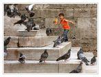 L'enfant aux pigeons.