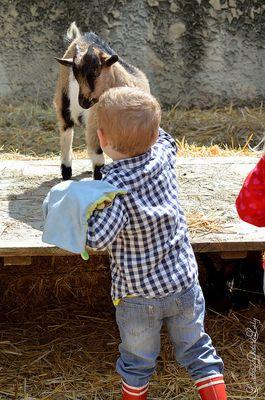 L'enfant et le chevreau