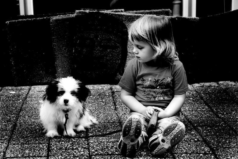 Lenis kleiner Freund